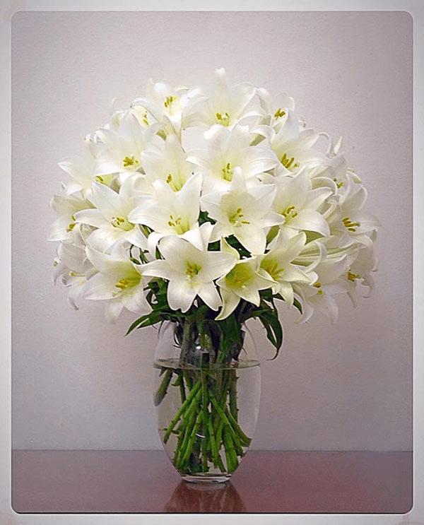 Cách cắm hoa thờ Phật bày tỏ lòng thành kính