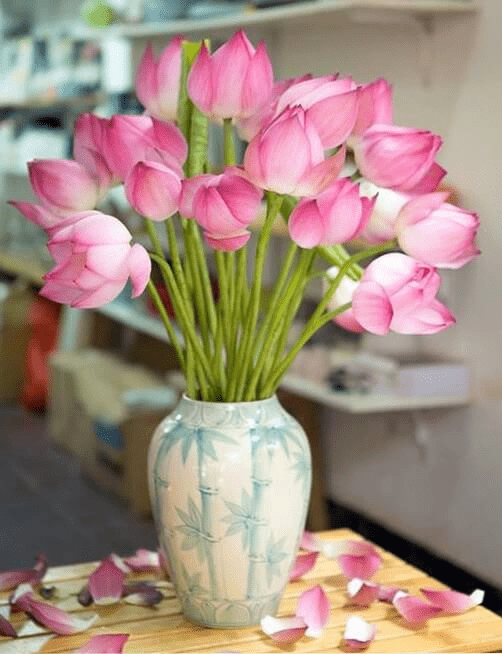 Chọn Chọn hoa dâng lên bàn thờ Phậthoa dâng lên bàn thờ Phật